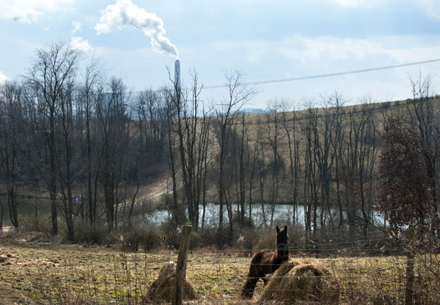 A horse grazes in front of a the Longview Power Plant in Maidsville, Wv.