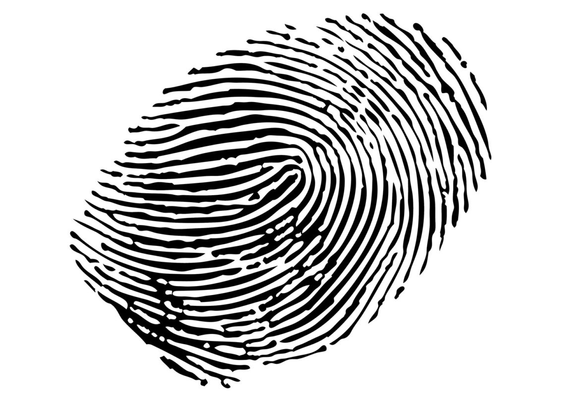fingerprint evidence The whorls, arches, ridges and loops left on a surface by the skin's oil have long been considered virtually unassailable evidence tying a person to a crime but now, the reliability of crime-scene fingerprint identification is being challenged.