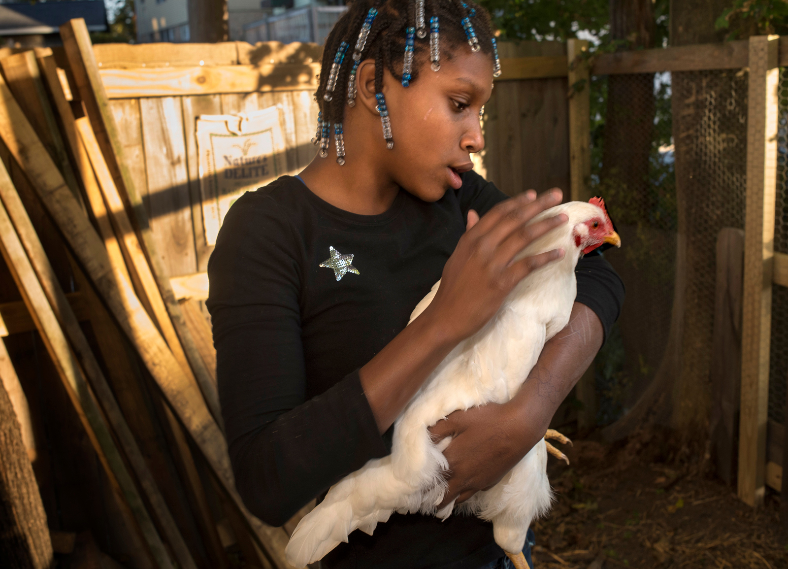 Carria Rooke, 12, pets one of the family chickens behind her Observatory Hill home. She was adopted along with six others by Christi and John Rooke. (Photo by Martha Rial/PublicSource)