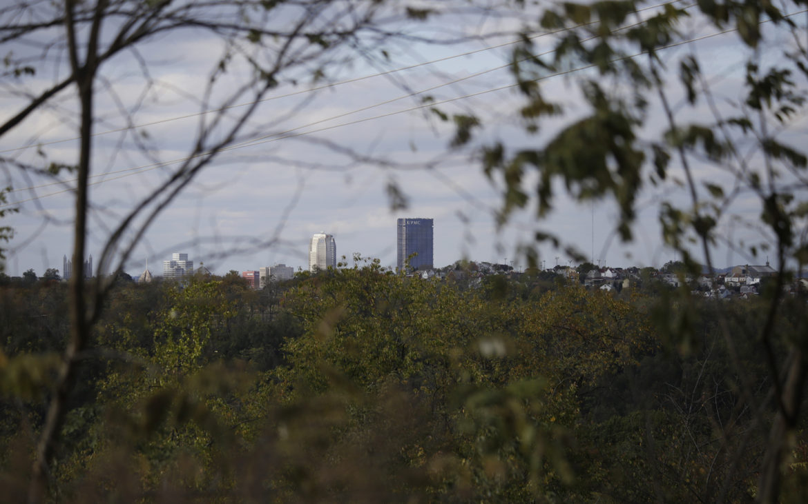 Buildings in downtown Pittsburgh can be seen from Hays Woods. (Photo by Ryan Loew/PublicSource)