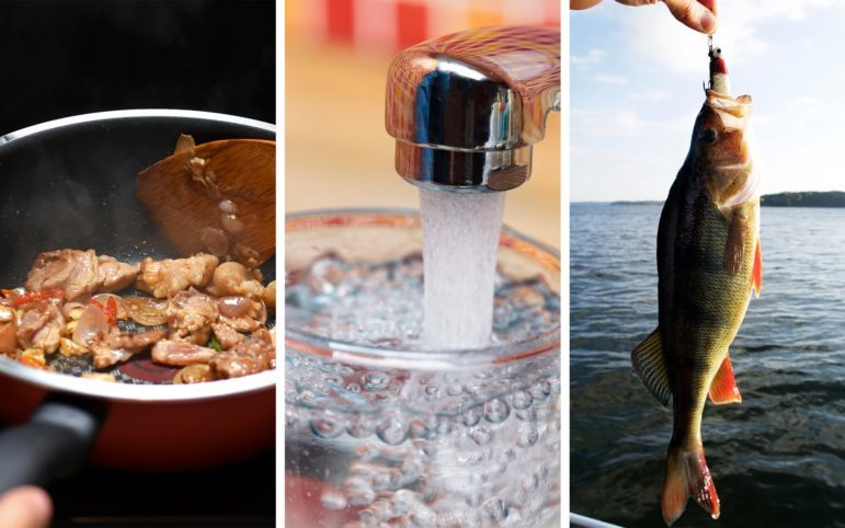New Jersey recently created new limits for how much fish caught in the estuaries of the Delaware River should be consumed because of the high levels of PFAS contamination. Pennsylvania is looking into what additional measures it will have to take to get the contamination under control. (Photos via iStock)