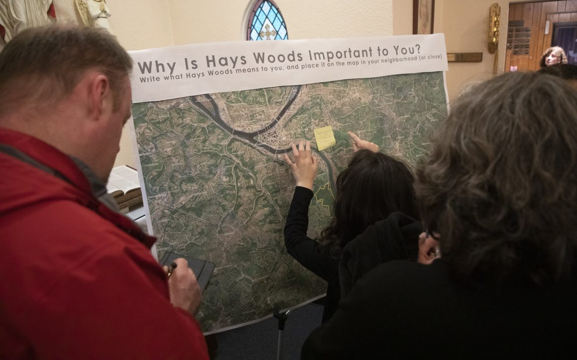Hays Woods task force says 'no' to housing. Residents learn its early findings.