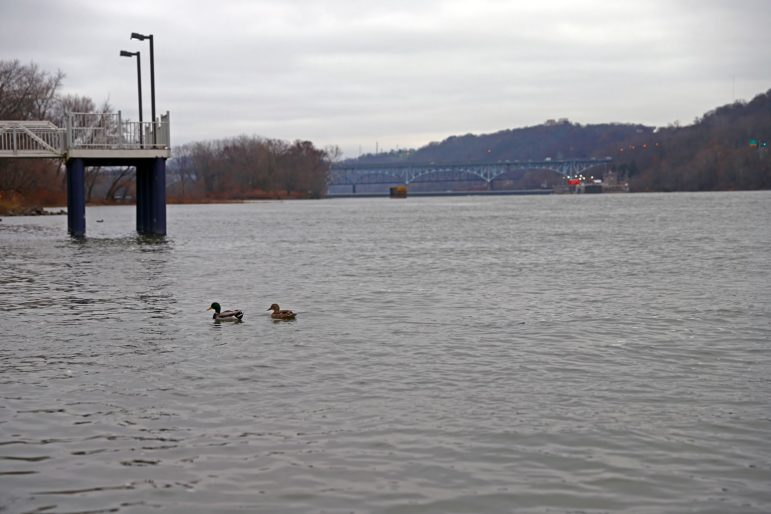 ALCOSAN's consent decree with the EPA requires it to spend $2 billion to reduce the amount of sewage that flows into the rivers near Pittsburgh, including the Allegheny River. (Photo by Jay Manning/PublicSource)