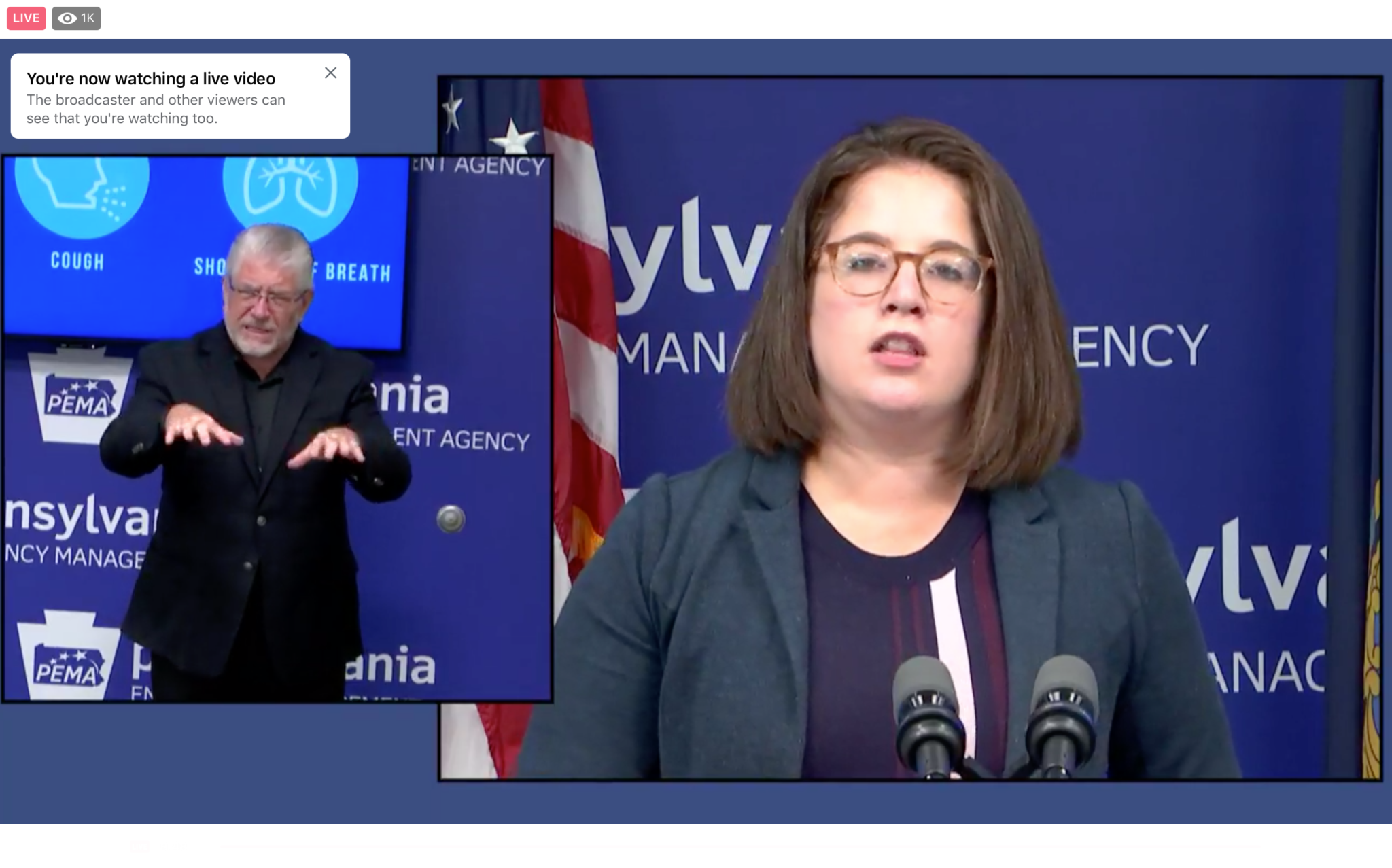 Pennsylvania Insurance Commissioner Jessica Altman talks about options for those who lose their health insurance due to the ailing economy, in a press conference on Sept. 23, 2020. (Screenshot)