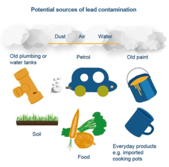 Images of common household sources of lead exposure including dust, water, pipes, soil, food, and paint.
